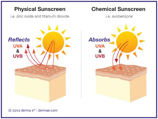 ChemicalvsPhysicalSunscreen_sm.jpg